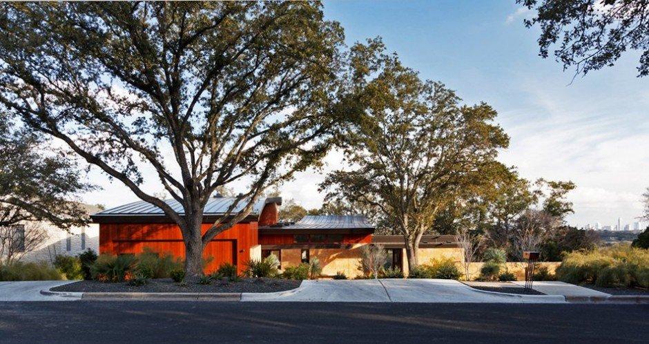 Tree-house 1