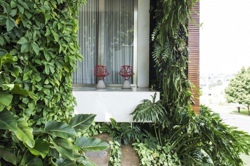 casa brasil 6